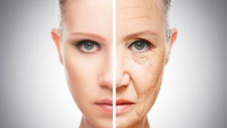 Scoperte da un team di ricercatori italiani molecole contro l'invecchiamento cellulare