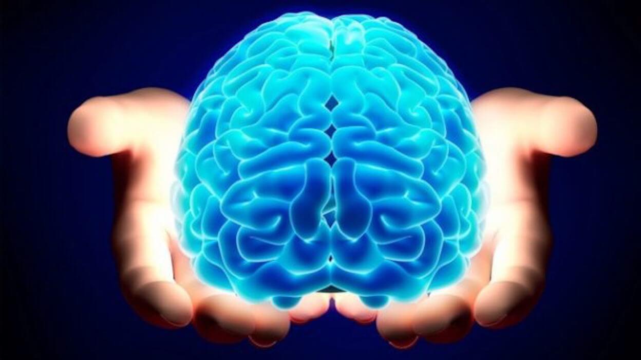 cervello donne uomini